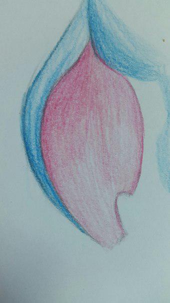 Рисуем Стича цветными карандашами - шаг 17