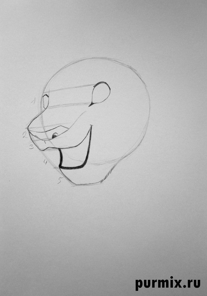 Как рисовать Налу из Король лев 2 - шаг 2