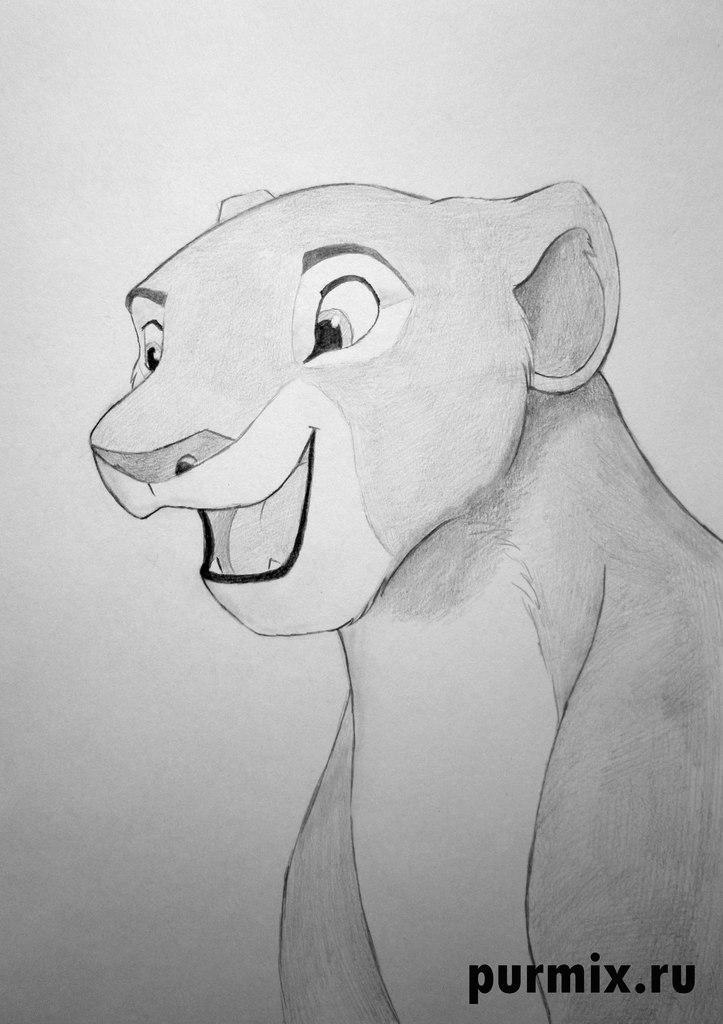 Как рисовать Налу из Король лев 2 - шаг 5