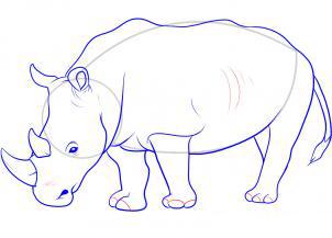 Рисуем носорога - шаг 10