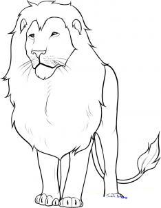 льва карандашом