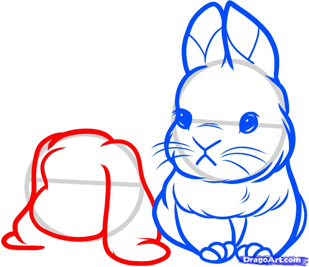 Как нарисовать маленьких кроликов поэтапно