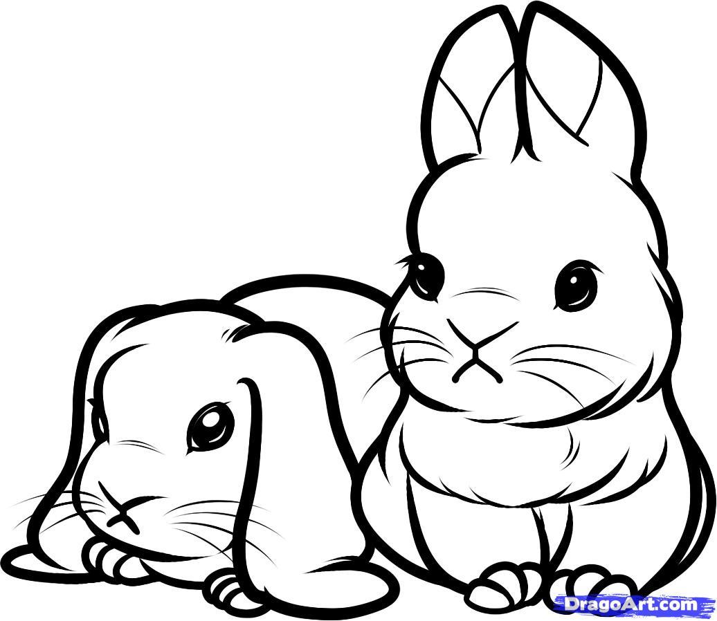 ... уроки рисования карандашом » Животные: purmix.ru/lessons.php?p=51