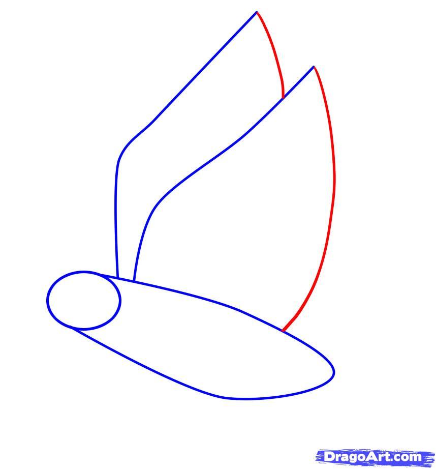 Рисуем ворону - шаг 2