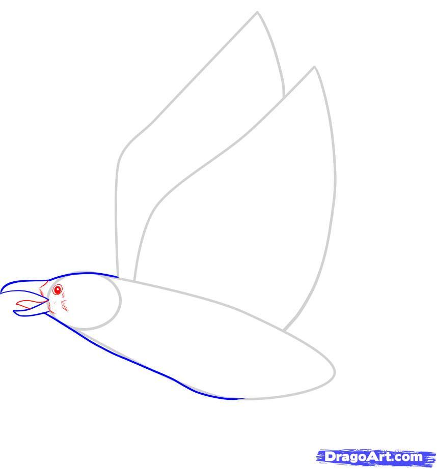 Рисуем ворону - шаг 4