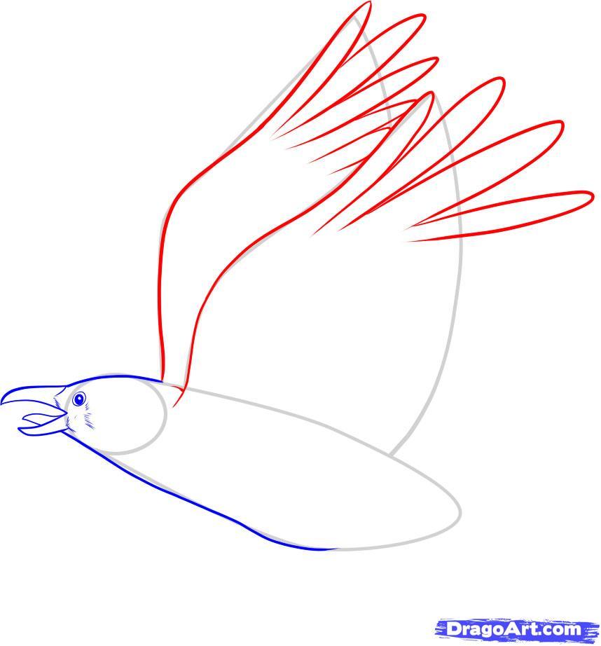 Рисуем ворону - шаг 5