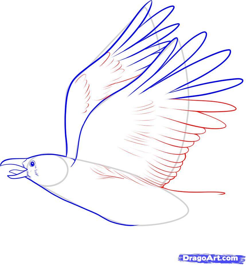 Рисуем ворону - шаг 6