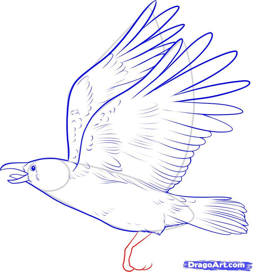 Рисуем ворону - шаг 8