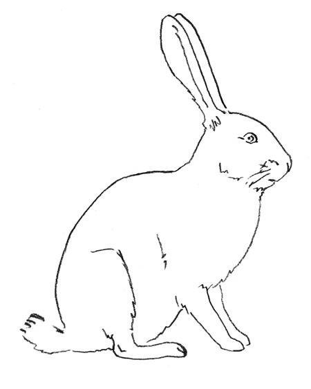 Рисуем зайца - шаг 3