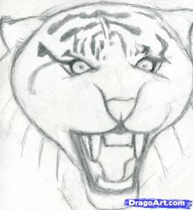 Рисуем голову тигра - шаг 4