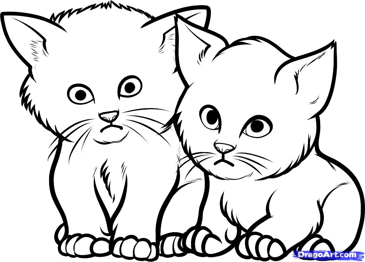 учимся рисовать котенка карандашом: