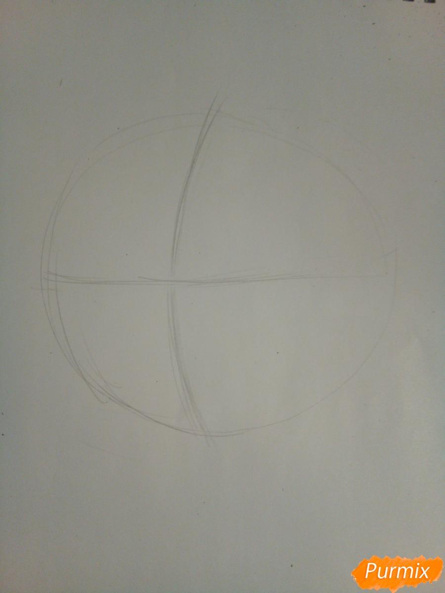 Рисуем голову сердитого кота простым - шаг 1