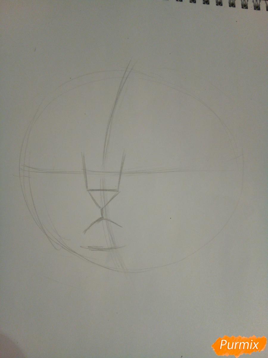 Рисуем голову сердитого кота простым - шаг 2