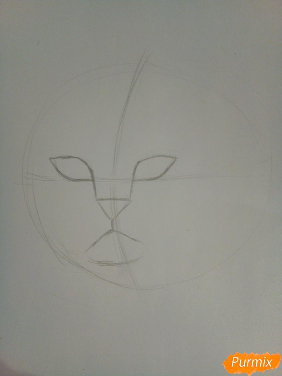 Рисуем голову сердитого кота простым - шаг 3