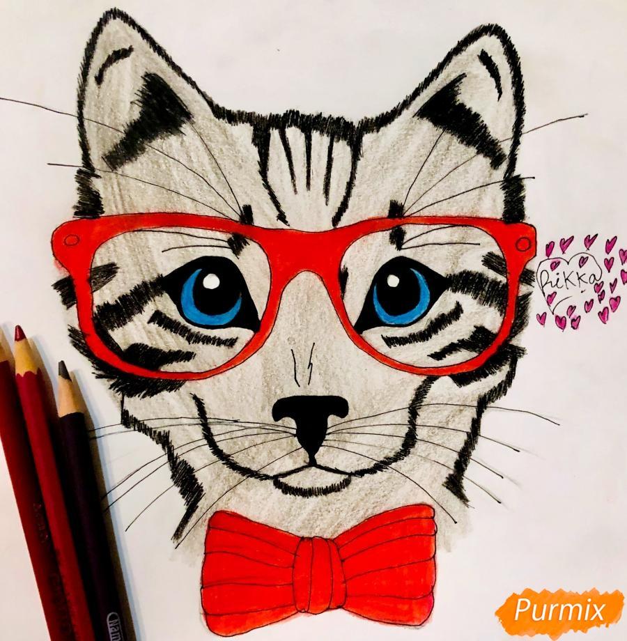 Как нарисовать портрет кошки в красных очках и с бантом поэтапно