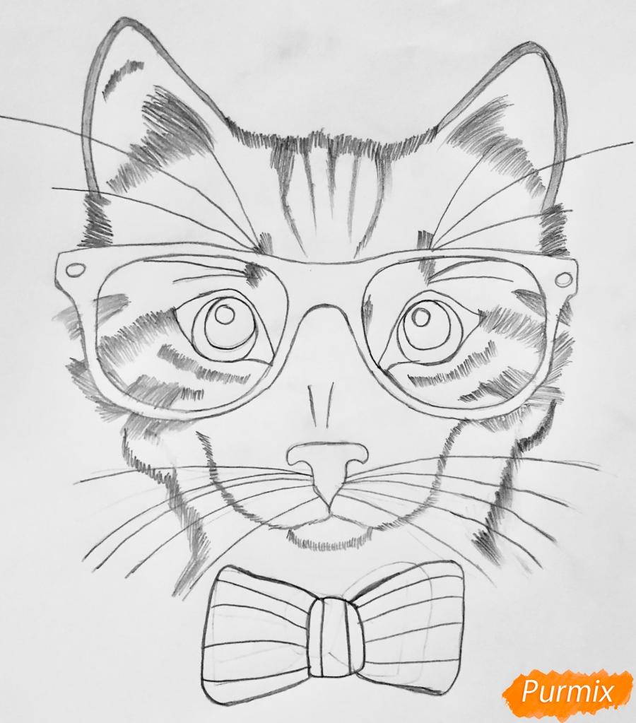 Рисуем портрет кошки в красных очках и с бантом - фото 5