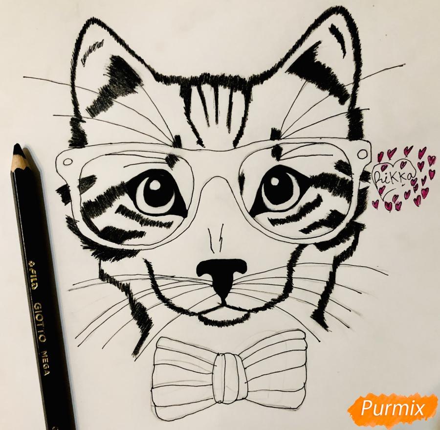 Рисуем портрет кошки в красных очках и с бантом - фото 7