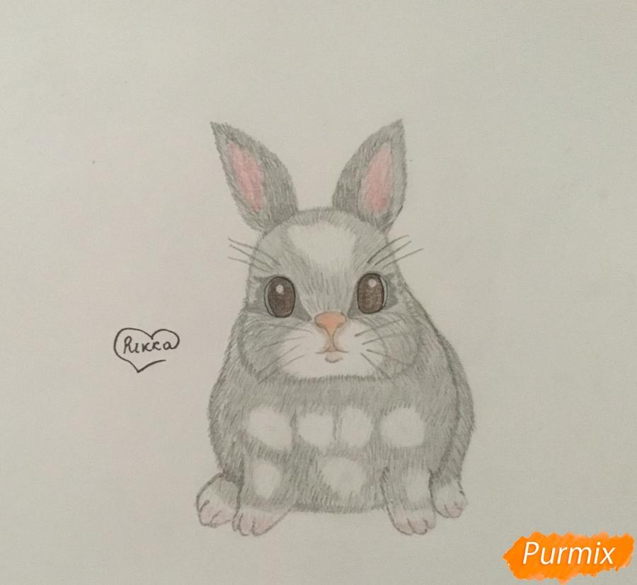 Рисуем маленького крольчонка - шаг 5