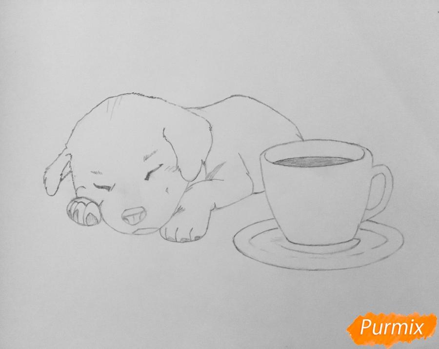 Рисуем милого спящего щеночка возле чашки кофе - шаг 5