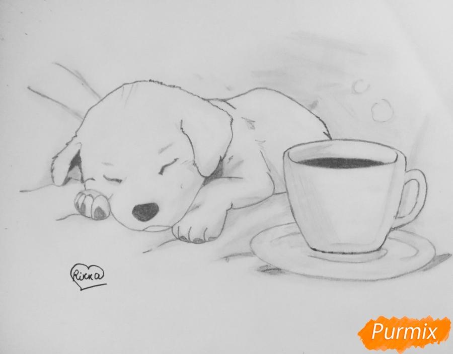 Рисуем милого спящего щеночка возле чашки кофе - шаг 6