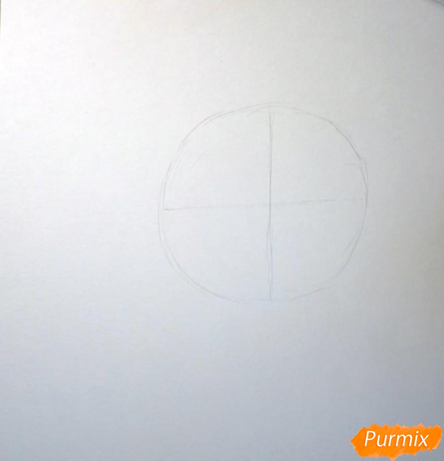 Рисуем морду белки - фото 1