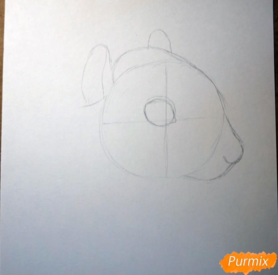 Рисуем морду белки - шаг 2