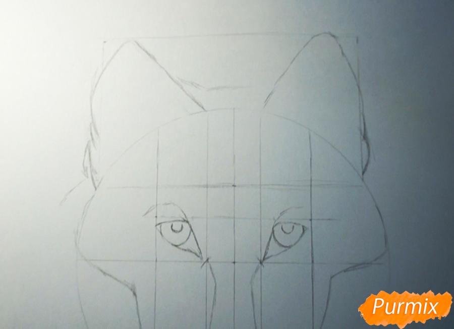 Рисуем морду Волка - фото 3