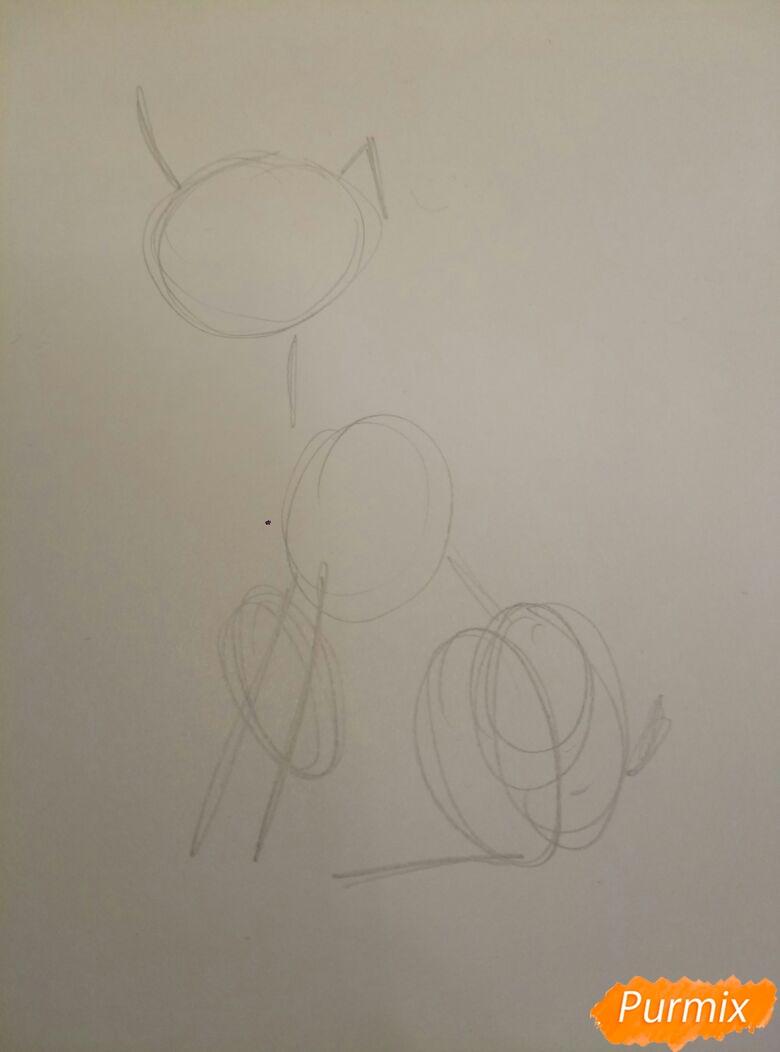 Рисуем мультяшную собаку пороты Джек-рассел-терьер - фото 1