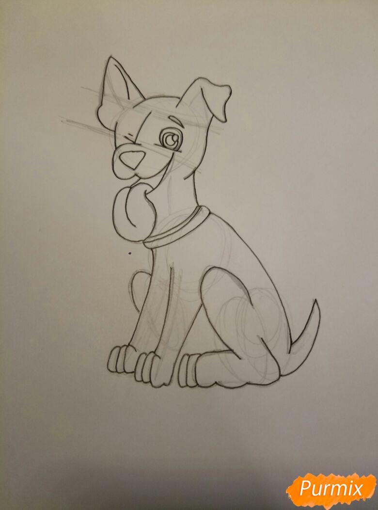 Рисуем мультяшную собаку пороты Джек-рассел-терьер - фото 6