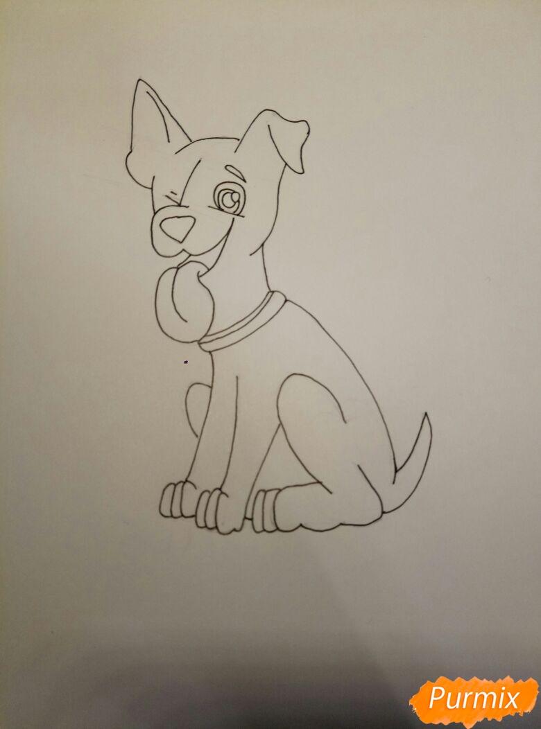 Рисуем мультяшную собаку пороты Джек-рассел-терьер - фото 7