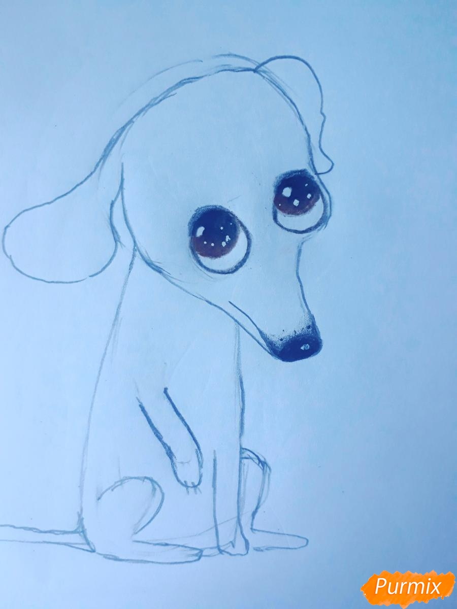 Рисуем мультяшную собаку карандашами - фото 6