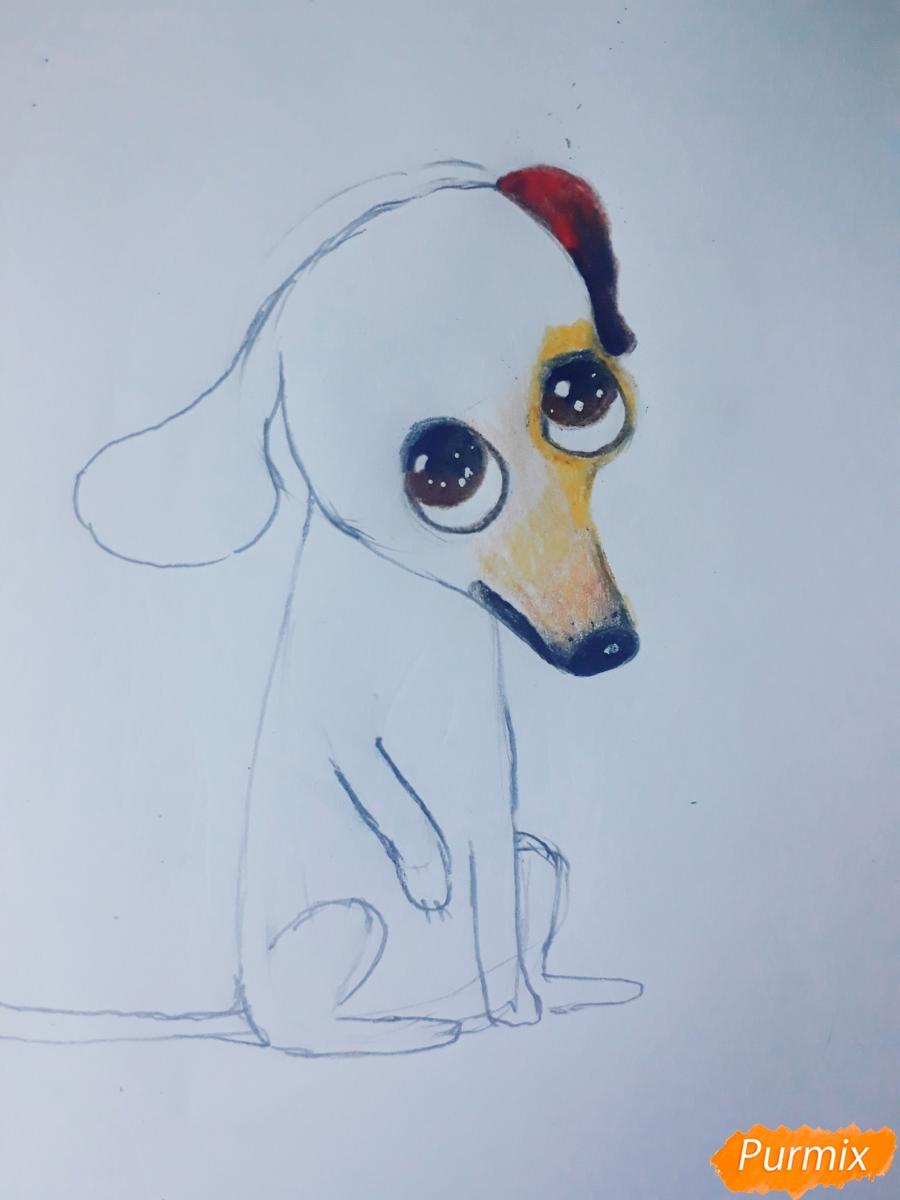 Рисуем мультяшную собаку карандашами - фото 7
