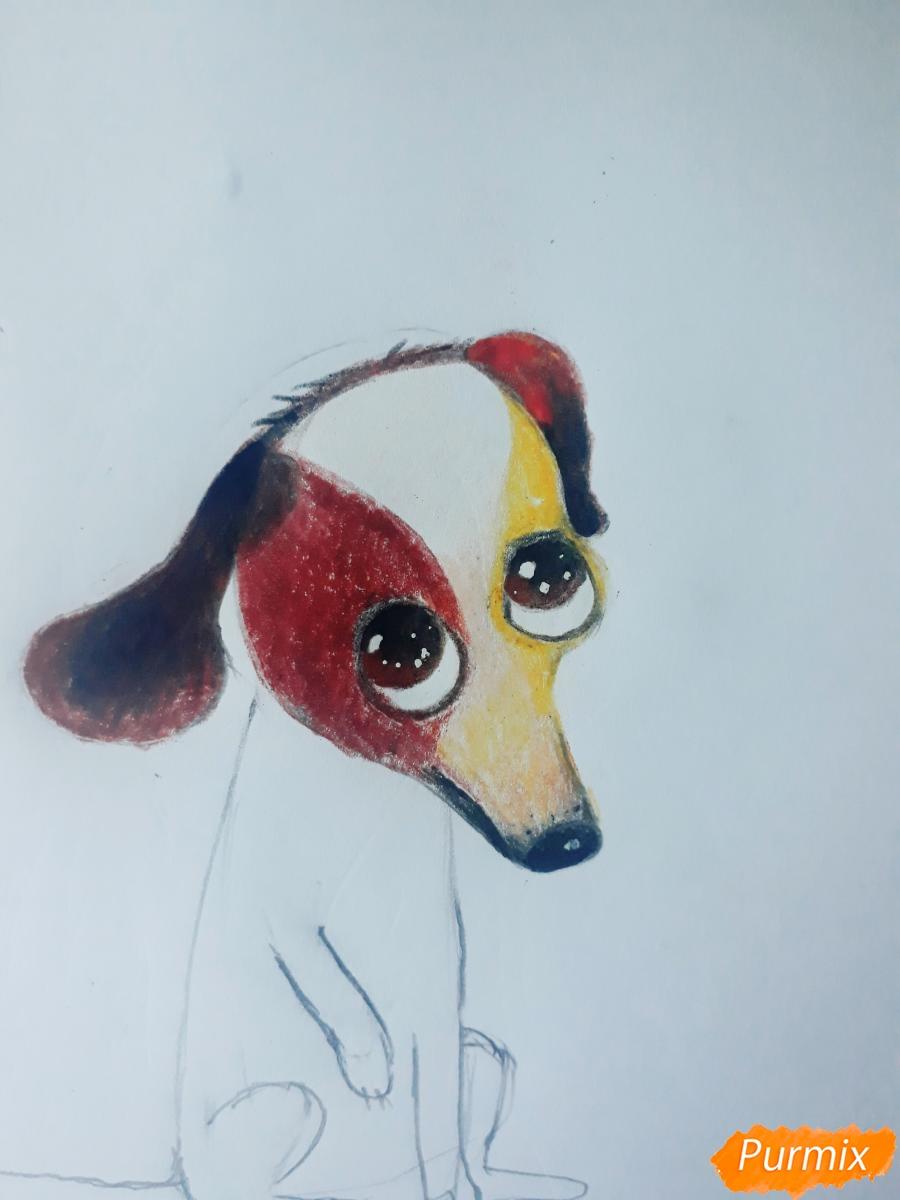 Рисуем мультяшную собаку карандашами - фото 8