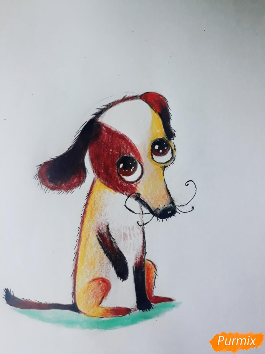 Рисуем мультяшную собаку карандашами - фото 9