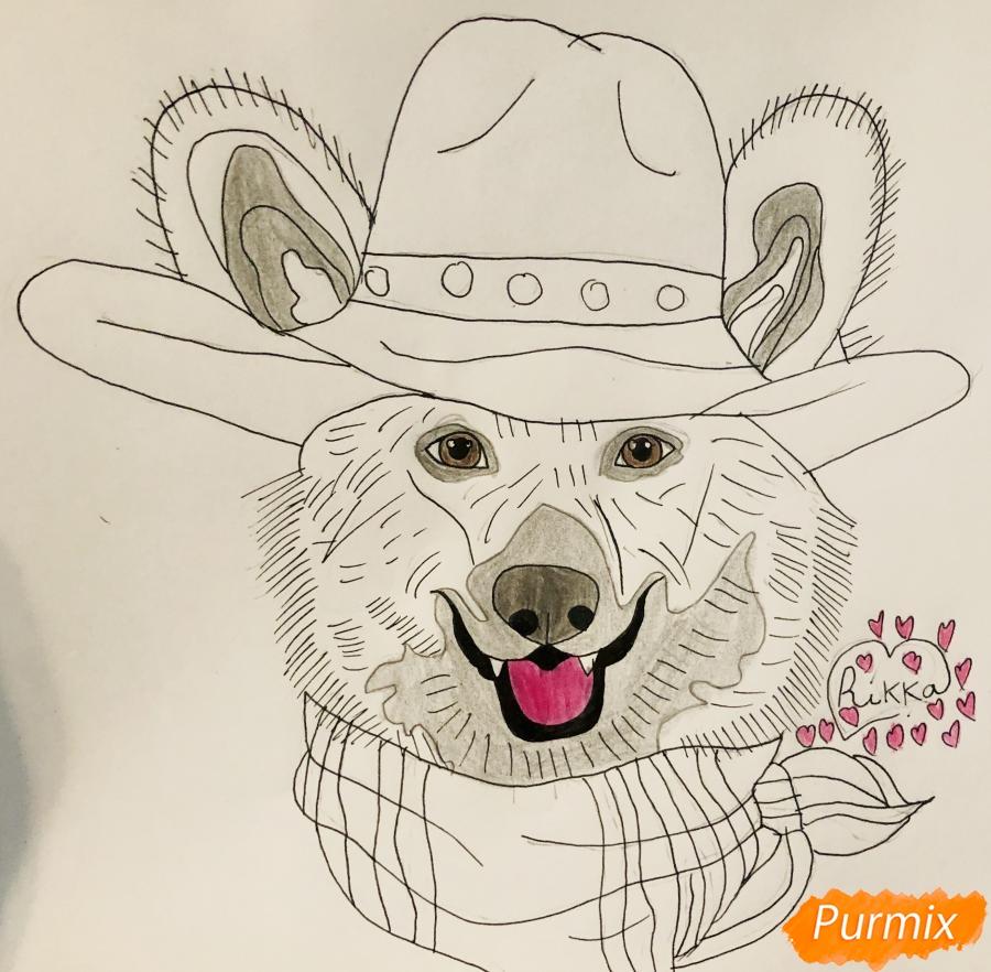 Рисуем собаку породы Вельш-корги пемброк с шляпой цветными карандашами - фото 7