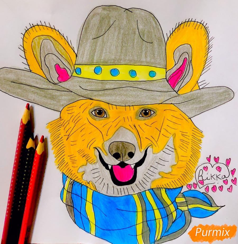 Как нарисовать собаку породы Вельш-корги пемброк с шляпой цветными карандашами поэтапно