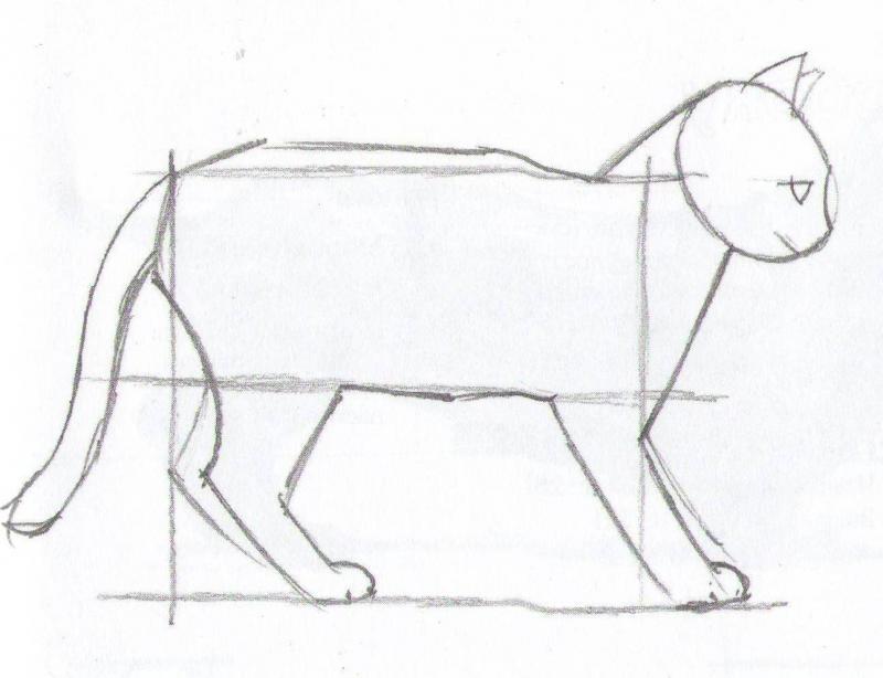 Рисуем кота карандашами  для начинающих - шаг 4