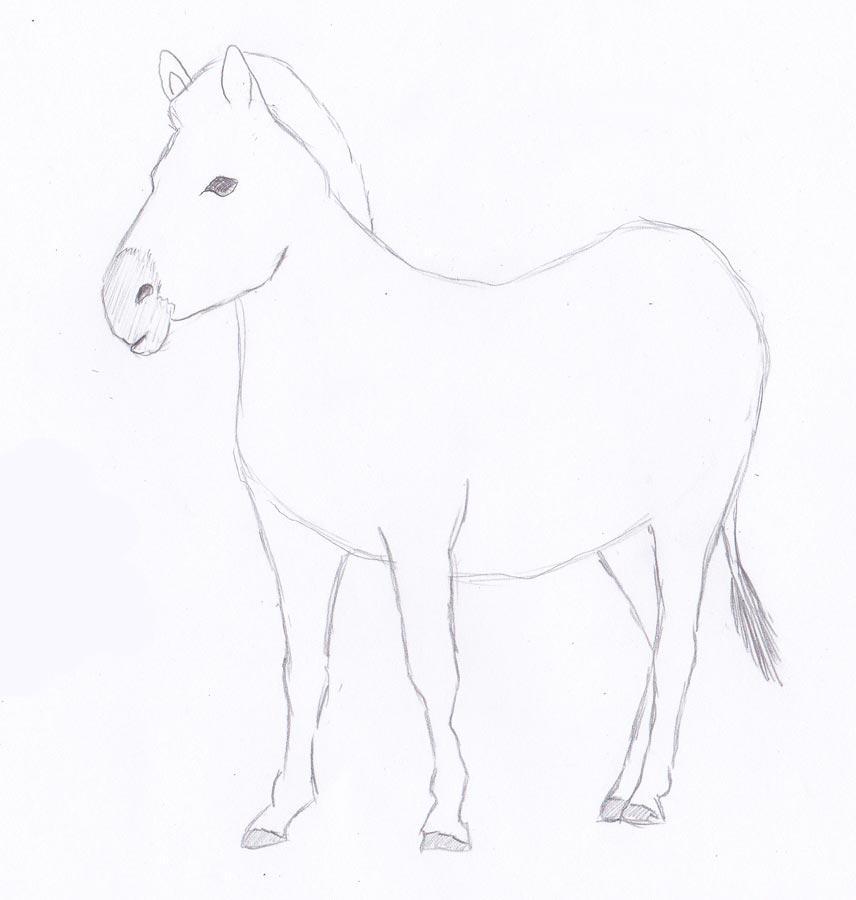 Рисуем зебру - шаг 4