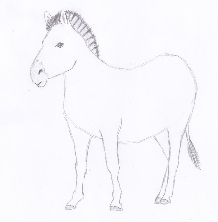 Рисуем зебру - шаг 5