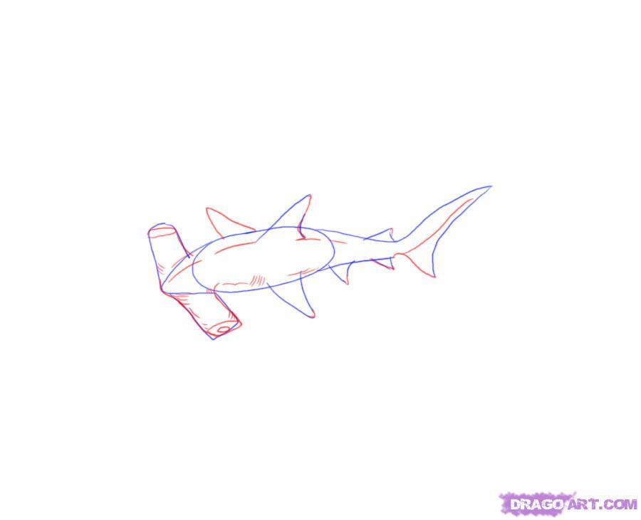 Рисуем акулу-молот - шаг 5