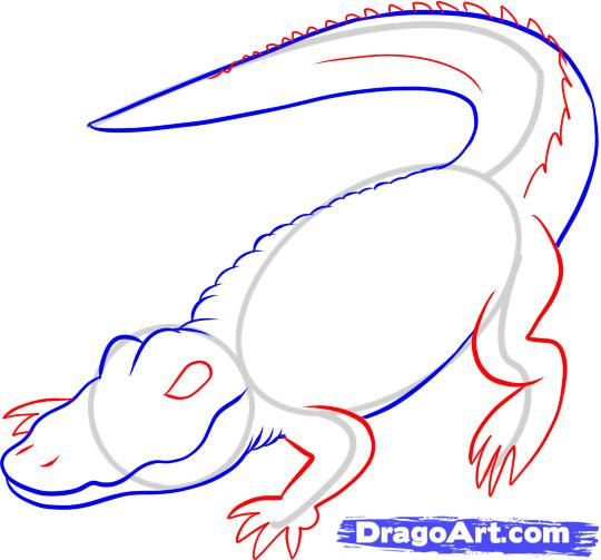 Рисуем Аллигатора - шаг 4