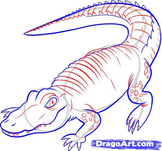 Рисуем Аллигатора - шаг 5