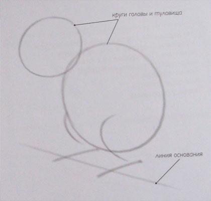 Рисуем Белку - шаг 1