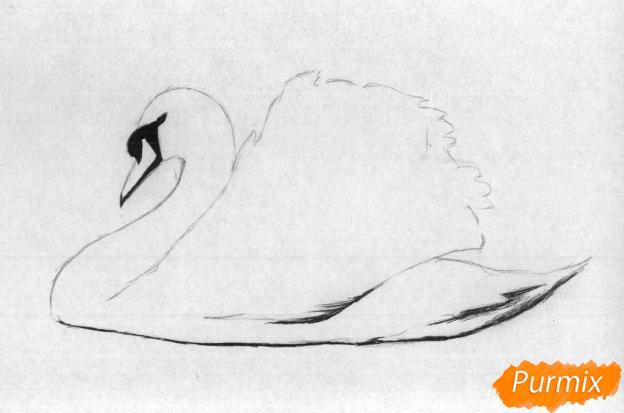 Рисуем белого лебедя карандашами и чёрной ручкой - шаг 2