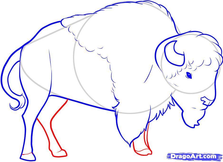 Бизон рисованный