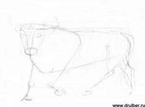 Рисуем быка в движении - фото 1