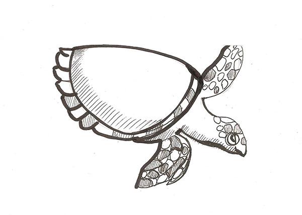 Рисуем морскую черепаху - шаг 5