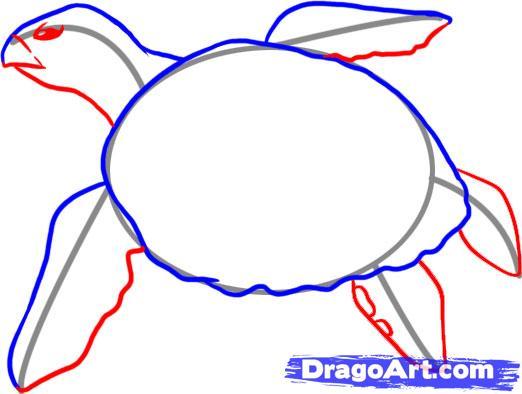 Рисуем черепаху - шаг 3