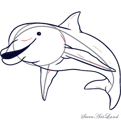 Как просто нарисовать Дельфина   для начинающих - шаг 5