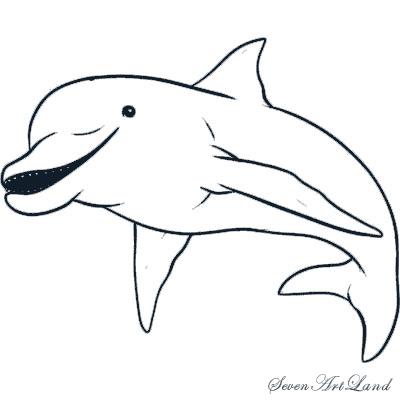 Как просто нарисовать Дельфина   для начинающих - шаг 6